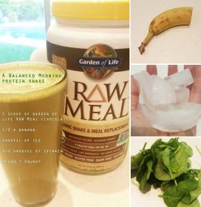 Garden Of Life Raw Meal Balanced Morning Protein Shake