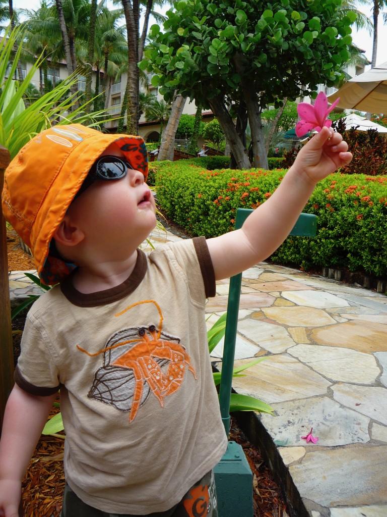 Best resorts in Aruba for families
